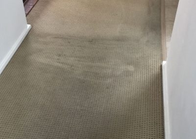 Carpet cleaning for a client's home in Burnside