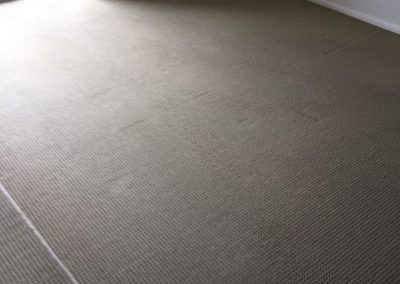 This room looks all fresh and lively after our carpet pressure clean