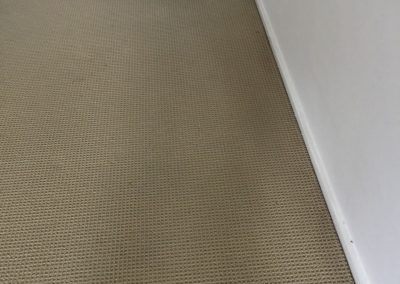 This room looks all fresh and lively after our carpet pressure clean - in Magill