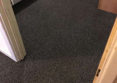 Residential carpet cleaning in suburban Adelaide using the steam clean method